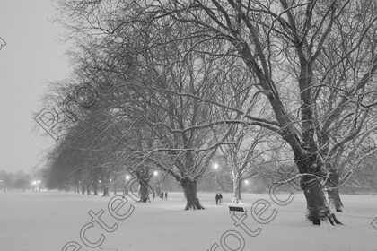 6H1C1387 