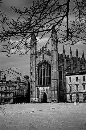DSC 0295 copy copy 