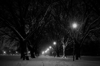 6H1C1390 