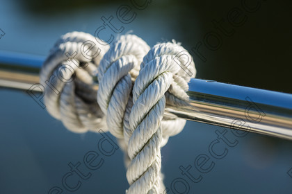 6H1C1597 