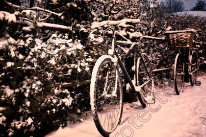 6H1C1367 