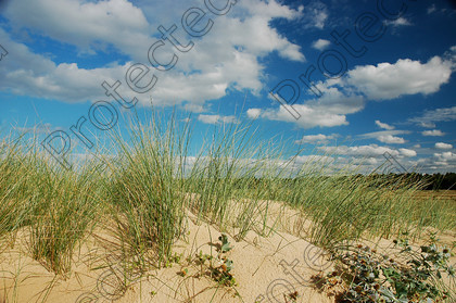 UK Norfolk DSC 0744 